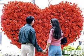 Беременность и день святого Валентина